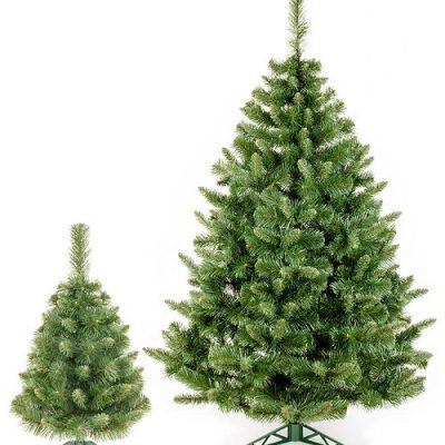 Božična drevesa